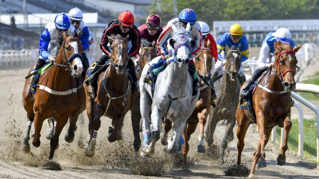 20 Horse Betting operators have created the World Tote Association, WoTA